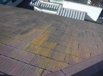 柏市F様邸 屋根外壁塗装リフォーム前2